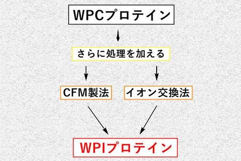 WPIプロテインが作られる工程の画像