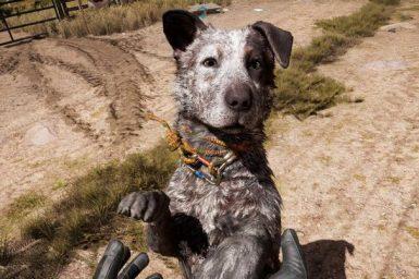 ファークライ5ゲーム内の犬の画像